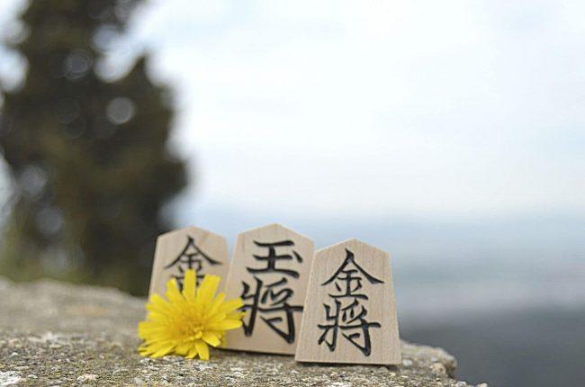 Foto de tres piezas y una flor en la naturaleza
